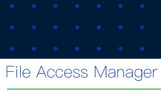 SP File Access Manager